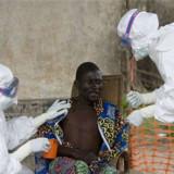 OMS espera eliminar epidemia de ébola en 2015