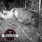 Encuentran otro cadáver entre cañales en Tierra Blanca