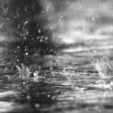 Científicos explican el olor de tierra en la lluvia