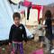 Ban visita Iraq y pide apoyo internacional para desplazados por la violencia