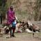 Nigeria: Plan de emergencia solicita mil millones de dólares para asistir a 7 millones de personas